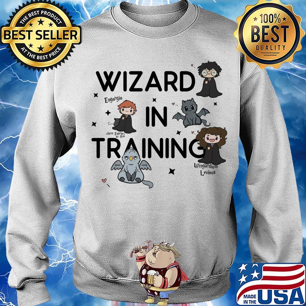 HARRY POTTER Boys Wizard in Training Navy Heather Tee