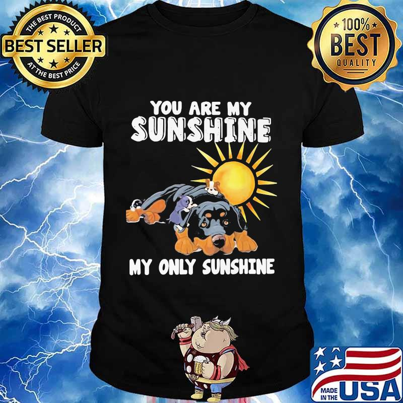 Rottweiler dog you are my sunshine my only sunshine shirt